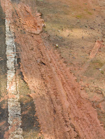 Dirt road and wheel lines on the mud photo