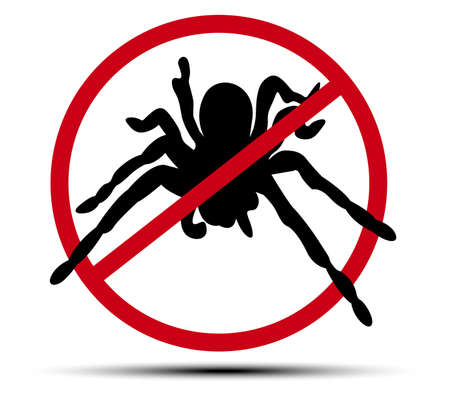 No spider sign vector from illustrator