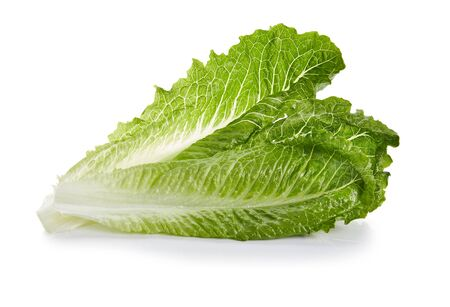 Romaine Hearts Isolated on White Background