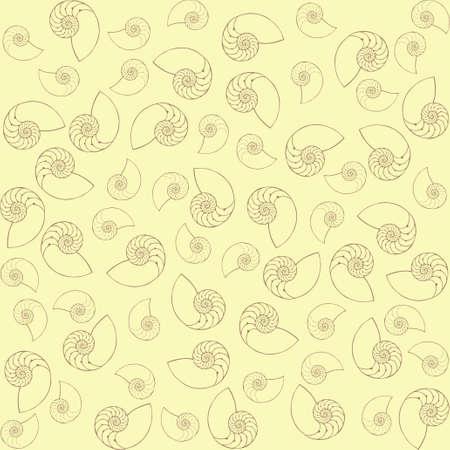 continuation: shells Illustration