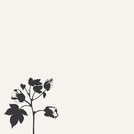 Bush van een katoen plant