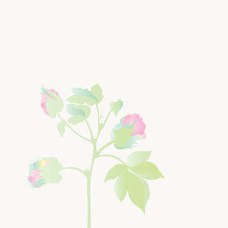 womanlike: plant blossoming