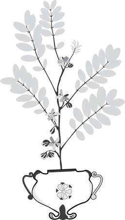 unpretentious: a dry plant is set in a vase