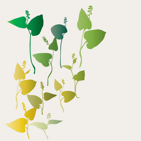windings: water plants are collected in composition