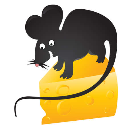 black mouse found cheese Vector