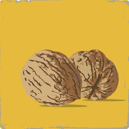 nit: Persian walnut