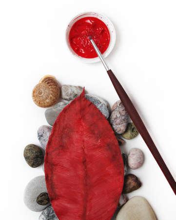 Autumn leaves colors Stock Photo - 10617789