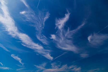 stratus: Daytime sky with cirrus and stratus clouds wide-angle contrast daytime nature background