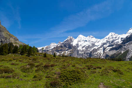 the bernese oberland: Amazing view of Swiss Alps and meadows near Oeschinensee Oeschinen lake, on Bernese Oberland, Switzerland