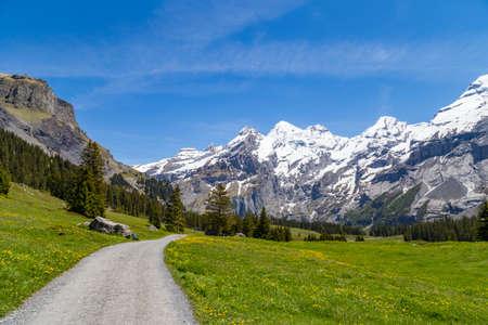 oberland: Amazing view of Swiss Alps and meadows near Oeschinensee Oeschinen lake, on Bernese Oberland, Switzerland