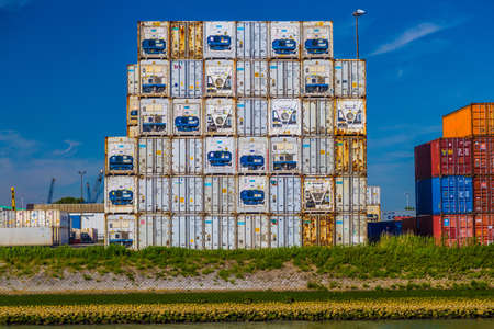 reefer: White reefer containers stacked in Port of Rotterdam