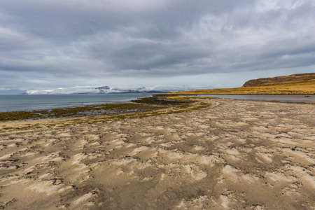 Wild sand beach with a view on Drangajokull, the northern most glacier in Iceland, Westfjords
