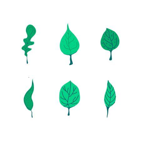 Vector design elements set green leaf collection, hand drawn illustration illustration