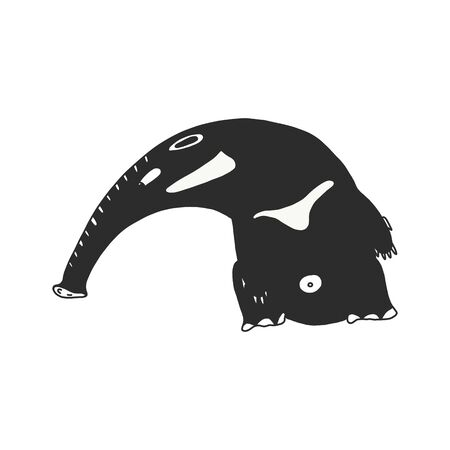 Anteater on white background illustration. doodle