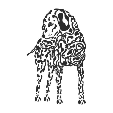 dog Dalmatian black and white drawing. hand drawn Standard-Bild - 133312091