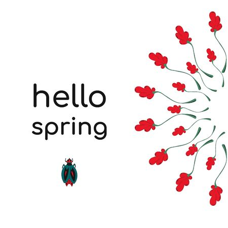 Creative concept with the phrase Hello spring.red flowers on a white background, lettering and a cute spring bug. Hand-drawn illustration in Vector design for spring sales, banners, advertising Ilustração