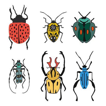 Satz verschiedene Arten von Käfern und Käfern einzeln auf weißem Hintergrund im flachen Stil. Detaillierte Abbildung Bugs und Käfer. Sammlungen von Insekten. Vektor-Illustration