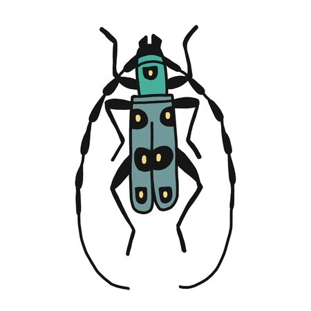 vector illustration of a hand-made barbel beetle.Flat design. insect isolated on a white background. It is suitable for childrens books, postcards, fabrics, educational websites or apps