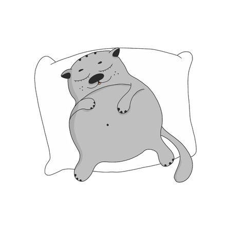 a lazy fat cat sleeps on a pillow. cute cartoon character. the pet is resting.vector illustration isolated on a white background. for the design of postcards, banners, t-shirt design, posters