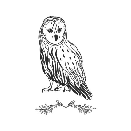 Owl Graphic Black White. forest bird drawn by hand. suitable for tattoos or design of postcards and posters, fabrics and applying to a mug.