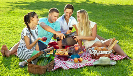 Groep van vier jonge vrienden genieten van een gezonde picknick buiten zitten op een rode en witte gecontroleerd deken op groen gras drink rode wijn en het eten van een verscheidenheid aan vers fruit en brood