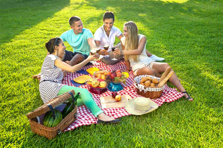 Group of young attractive friends sitting on a red checked cloth on green grass having a picnic and toasting each other with glasses of wine photo
