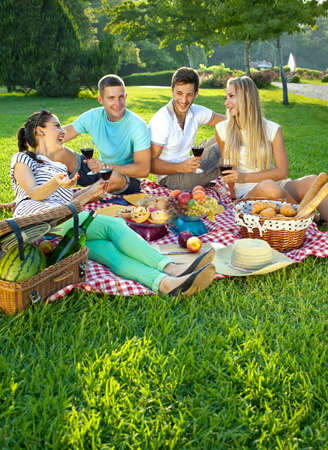 Two attractive young couples picnicking in a park relaxing on a fresh red and white cloth spread out on green grass as they chat and enjoy their wine and food photo