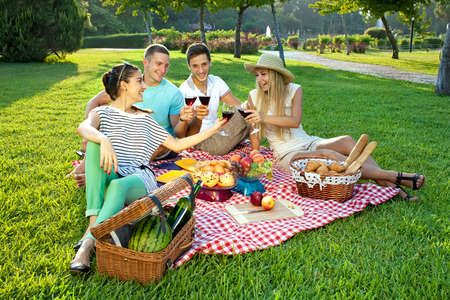 Four young friends picnicking in the park sitting on a rustic red and white checked cloth on a green lawn toasting with glasses of red wine