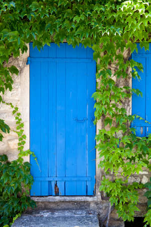 Old blue painted door, surrounded by ivy tendrils  France, Provence photo
