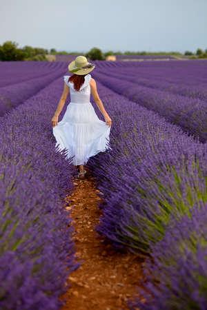 紫色のラベンダー畑で白いドレスの散歩でロマンチックな若い女性光の緑の帽子を着ての長い髪のブルネットを発生させます若干、両側に彼女の白 写真素材