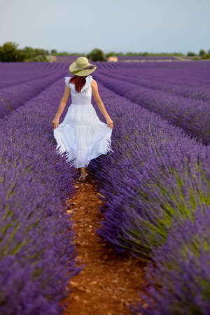 Romantic young female in white dress walks in purple lavender field  Brunette with long hair wearing light green hat, raises slightly her white dress on both sides, moving away from the viewer  Back view