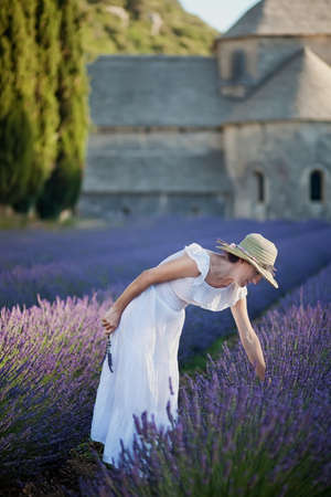 lavender bushes: Romantic lady in white dress and hat collecting some lavender from purple lavender field  In blurry background an old monastery  Stock Photo