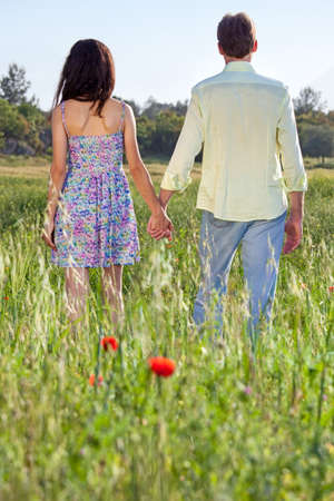 lovers holding hands: Affectionate young couple walking through a poppy field with colorful red flowers strolling hand in hand away from the camera through the long grass in summer sunshine