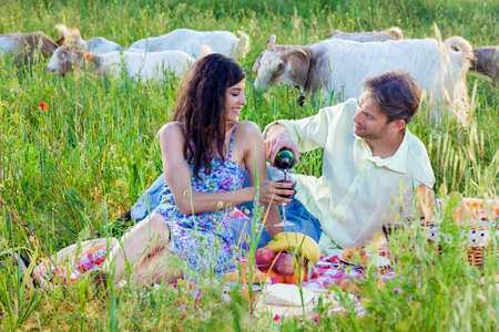 Romantic couple enjoying a glass of red wine on a summer picnic as the young man pours a glass for his wife or girlfriend with a flock of goats grazing behind them in the grassy meadow
