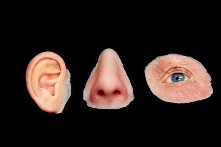 eye socket: Artificial Colored Silicone Made Facial Prostheses, Ear, Nose, Eye, Isolated on Black Background. Stock Photo