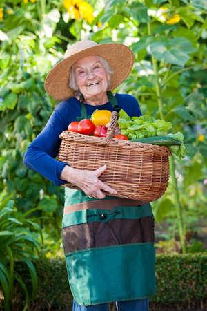 vejez feliz: Retrato de una mujer mayor feliz en el jardín que sostiene una cesta llena de verduras frescas mientras mira a la cámara. Foto de archivo
