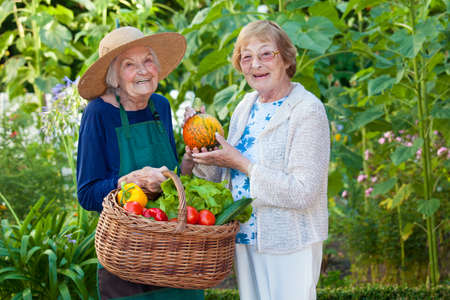 Due Donne anziane felici alla fattoria, con verdure fresche in un cestino, guardando la camera. Archivio Fotografico