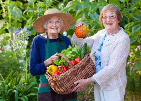 Two Smiling Senior Women Showing Fresh Farm Vegetables in a Basket While Looking at the Camera.