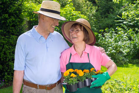 Happy Senior Couple Standing in Garden Looking at Each Other Holding Flats of Bright Orange Flowers for Planting