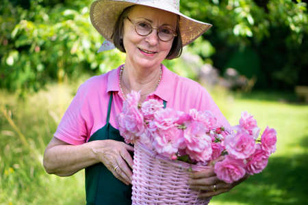 Single middle aged female gardener in hat and apron smiling while holding basket of roses in yard during summer.