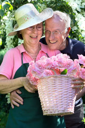 cuttings: Happy senior couple wearing eyeglasses embracing while holding a pink basket full of beautiful rose bloom cuttings in garden. Stock Photo