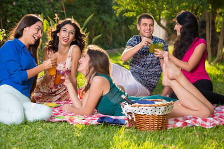 socialising: Small group of smiling friends near basket with wine bottle relaxing on a picnic blanket having drinks