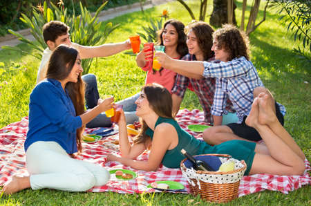 camaraderie: Six cheerful friends raising their beverages to toast while relaxing on a picnic blanket near a basket in the park