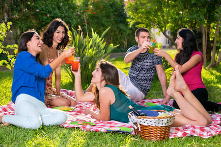 camaraderie: Happy friends toasting on a sunny day in the park while relaxing on a red and white checkered picnic blanket Stock Photo