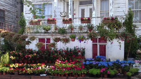 fasade: Balcony of a house with lots of flowers