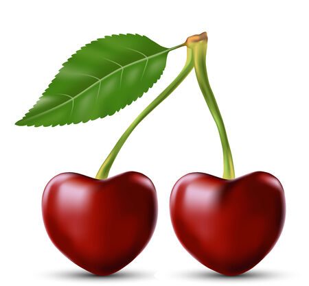 lustful: two lovers cherry as the heart symbol of love  on a white background