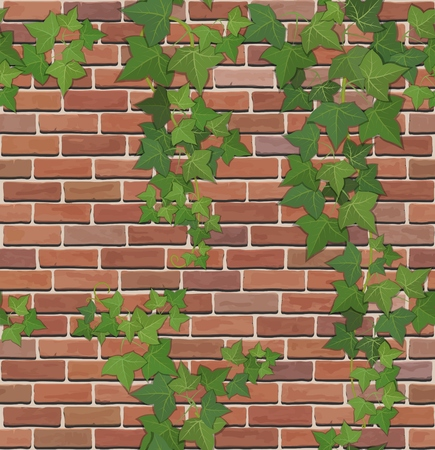 Brick wall with ivy, vector texture. 矢量图像