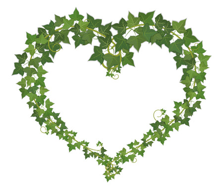 verdant: Heart symbol, woven from vines hanging branches. Illustration