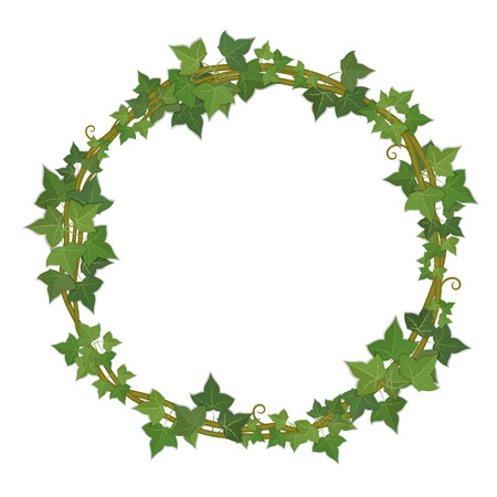 ivy vine: round decorative frame of ivy branches