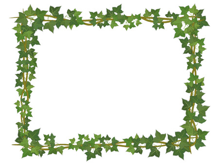 vine border: square decorative frame of ivy branches